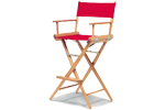Director Chairs Category