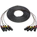 TecNec 4-Channel  XLRM-XLRF Audio Snake 10ft.