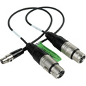 Cable Linking FP24 and FP33 Mixers 12 inches