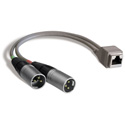 Studio Hub ADAPT-XLRM XLR Male to RJ-45