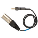 Sennheiser XLR Male Unbalanced Line Output to Mini Locking 6 Ft Cable