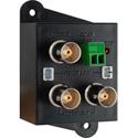 1x2 Composite Video Distribution Amplifier with BNC Connectors