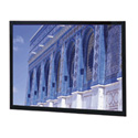Da-Lite 91525V 119 Inch Da-Snap HDTV Screen with Pro-Trim Frame Finish