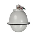 Sony EVIID8C1 Indoor Pendant Mount Clear Dome Housing