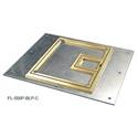 Cover with 1/4in Brass Carpet Flange  (Lift off door)