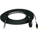 Sescom IPHONE-MIC-6 Monitoring Cable iPhone IPod/IPad TRRS to XLR Mic and 3.5mm Monitor Jack - 6 Foot