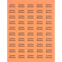 1x1.5 Warning Label 1000 Pk Orange (Camera Original)
