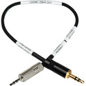 Sescom LN2MIC-ZMH4-GH1 2.5mm Line to Mic DSLR Cable for Zoom H4N-PRO 9 Inch