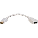 8 InchMini DVI Male to HDMI Female Adapter Cable