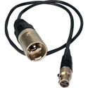 Female Mini XLR to XLR Male Cable Adapter for Burst 18 Inches