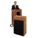 Oklahoma Sound #300 Medium Oak Auxiliary Speaker Cabinet
