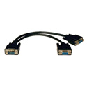 Tripplite P516-001 HD15M to 2 x HD15F VGA / XVGA Splitter Cable 1ft