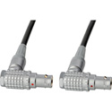 RS422 Command Cable - Lemo RA 10P to RA 10P - 1 Foot