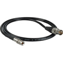 Laird Red One Camera 3G SDI DIN 1.0/2.3 to BNC Female Cable Adapter - 1 Foot