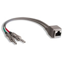 StudioHub ADAPT-MINIM RJ-45 Female to 1/8 Inch - 8 Inches