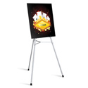 Testrite 555 Flipchart & Display Easel