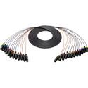 Connectronics 12-Channel XLRF-XLRM Audio Snake 15Ft