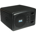 Anchor AN-130BK Plus 30 Watt Powered Monitor - Black