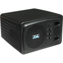 Anchor AN-130U2BK+ Speaker Monitor with Built-in Dual Wireless Mic Receiver - Black
