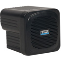 Anchor AN-MINI Portable PA System with Built-In Dual Wireless Mic Receiver