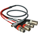 Lemo 10 pin to XLR Audio Breakout Cable for the Atomos Shogun - 3ft