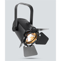Chauvet EVE-TF20 Compact LED Accent Luminaire