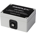 Camplex Singlemode OpticalCON QUAD NO4FDW-A to Two Duplex LC Female Breakout