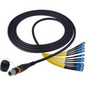 Camplex CMX-OCMTPSMSC10 opticalCON MTP to SC Singlemode 12 Channel Breakout Cable - 10 Foot