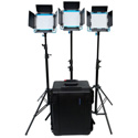 Dracast DRL500SNBC3LK LED500 S-Series Bi-Color 3-Light Kit with NP-F Battery and Hard Case