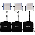 Dracast DRLK3X1000DK LED1000 Pro Daylight 3 Light Kit with V-Mount Battery Plates and Stands