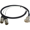 Laird Premium HD15 to XLR Male Analog Audio I/O Breakout Cable for Ensemble Designs BrightEye 54 - 3 Foot