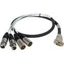 Laird Premium HD15 to XLR Male & Female Analog Audio I/O Breakout Cable for Ensemble Designs BrightEye 30/30D - 3 Foot