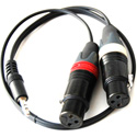 ETS PA912 2-Channel DSLR Audio Camera Balun