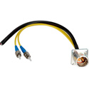 Camplex LEMO EDW to Dual ST & Blunt Lead Fiber Breakout Cable 6 Inch