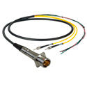 Camplex LEMO PBW to Dual ST & Blunt Lead In-Line Fiber Breakout 6 Foot