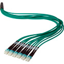 Camplex 12-Channel LC-LC OM3 Multimode Plenum Fiber Optic Cable 100 Foot