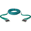Camplex 12-Channel LC-LC OM3 Multimode Plenum Fiber Optic Cable 200 Foot
