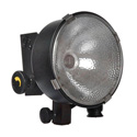 LOWEL D2-101 DP Light with FEL Lamp