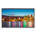 NEC Display P402 40 inch Professional-Grade Large-Screen Display