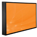 Peerless CL-42PLC68-OB 42 Inch Xtreme Sealed LCD Display - IP68 - No Speakers - Daylight Readable