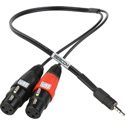 Sescom SES-IPSUMXLR18IN XLR to TRRS 3.5mm Plug Line to Mic Level iPhone / iPod / iPad Summing Cable - 18 Inch