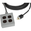 Stage Systems Power Cable 25ft - 20 Amp