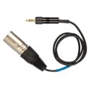 Tec-Nec XLR Male Unbalanced Line Output to 3.5mm Mini Locking 18 Inch Cable Sennheiser CL100-2 Equivalent