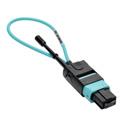 Tripp Lite N844-LOOP-12F MTP / MPO Fiber Optic Loopback Tester (Multimode 50/125um OM3) - Female