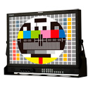 Viewz VZ-215PM-P 21.5-Inch FHD Reference IPS 8-Bit Monitor