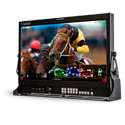 Viewz VZ-240PM-PL 24-Inch FHD Reference IPS 10-Bit Monitor