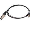 Mini XLR 4 pin Female to XLR Female 1ft