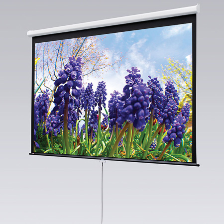 Draper 207009 60x80 Inch 4:3 NTSC Video Format Matt White Luma Screen