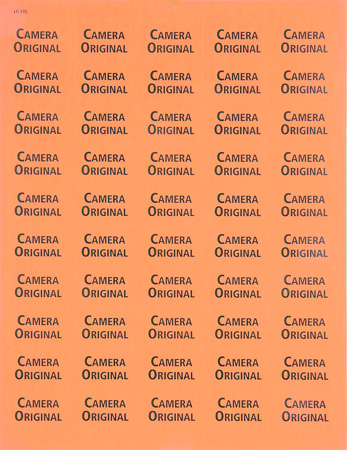 1x1.5 Warning Label 500 Pk Orange (Camera Original)