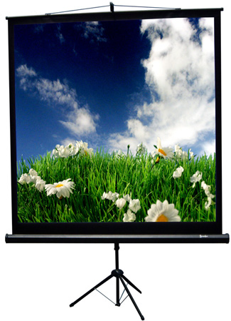 Recordex 501119 119 Inch 1:1 TriMaxx Advanced Tripod Screen 80x80 Inch